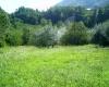 Supino, Lazio 03019, ,Indipendente,in Vendita