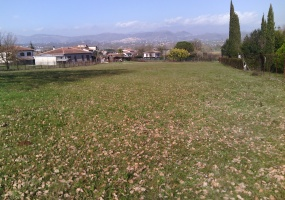 Supino,Lazio,Edificabile